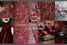 Pantone / Colour Trends