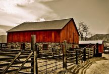 Lovely Old Barns/Back Road Life / by Georgina Arnold