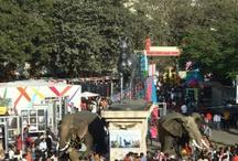 Festivals in Karnala