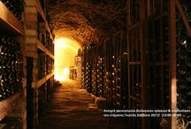 organic wines / organic wine tasting