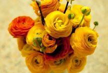 Florals / by Heather Goff