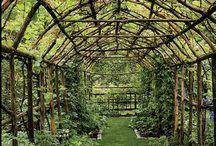 Gardens / Ihannepuutarhojani