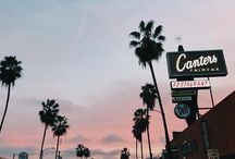 Palm trees and summer