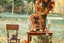 Осень крис