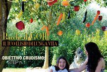 Dal Magazine...