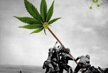 Legalize It!  / by Dank Tank