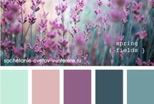 palety kolorow