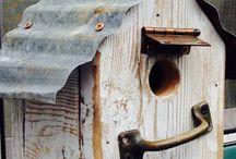 Birdhouses and feeders