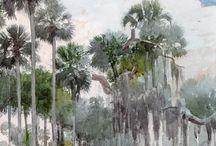 Florida watercolors