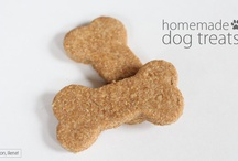 Dog Treat Recipes / by Heather Gucky