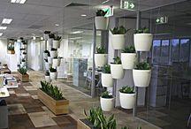 Ofis tadilat dekorasyon / Dek-mar inşaat olarak ofis tadilat işleri ile ilgili birçok alanda hizmet vermekteyiz.