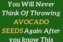 the health benefits of eating the avocado seed in smoothies