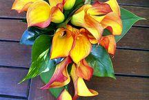 Žluté kytice