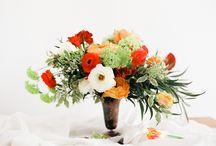 Floral Concoctions