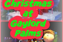 Disney at Christmas / Christmas events, crafts, design, décor and food inspired by Disney. What to do at Walt Disney World during the holidays, foods to eat, snacks, drinks and décor inspired by Mickey Mouse, Minnie Mouse, Goofy, Pluto and other Disney characters.