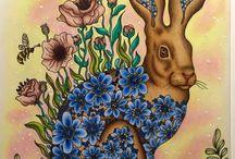 Hanna Karlzon szinezések(Coloring)