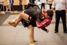 kick-boxing sanshou, grappling / programme pour tous les niveaux... autant non-compétitif que compétitif