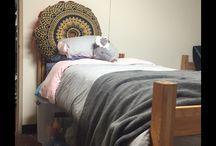 Adelles dorm room