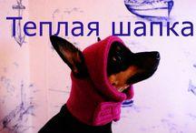 шитье и вязание для собак