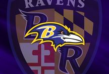 Baltimore Ravens / by Susan Barnhouse