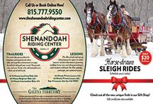 Midwest Horseback Riding Getaways / THE SHENANDOAH RIDING CENTER AT EAGLE RIDGE RESORT AND SPA! Enjoy all four seasons of The Galena Territory with trail rides and lessons at the nearby Shenandoah Riding Center. With 40-miles of groomed riding trails, Shenandoah offers something for riders of all experience levels, from beginner to advanced. For the winter months, Shenandoah Riding Center will be offering sleigh rides, trail rides and lessons!