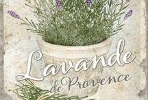 Лаванда