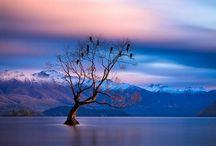 Kia Ora kiwiana / New Zealand