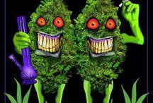 Funny bud pics