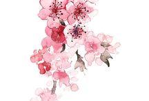 Acuarela de flor