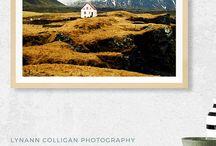 Lynann Colligan Photography