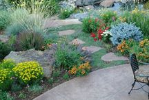 Landscaping/Xeroscaping / by Robin Roberts