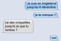Blagues De Chat