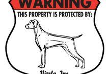 Vizsla Signs and Stuff / Dog signs for Vizsla and other dog stuff! http://www.signswithanattitude.com/dog_signs/vizsla.html