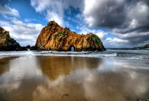 Big sur and redwoods / by Chelsea Layne