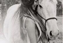 cavalos poses