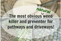 weeding walkways