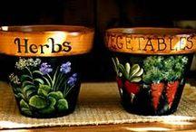 Vasos de barro
