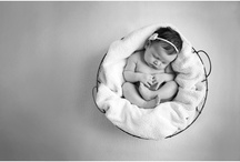 newborn Photos / by Amy Coursey
