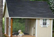 Box Dog House