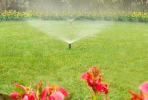 Lawn Irrigation / Make every drop count with a professionally maintained irrigation system.
