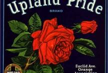 Inland Empire Vintage Fruit Labels