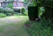 Garden Design Before and After / designing and building gardens