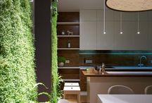 # DECOR + plants /  plantes  / deco + plantas / Decoration + plants .