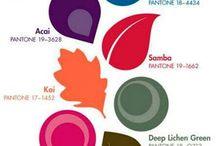colores favoritos