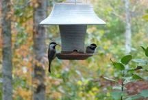 comedores para pássaros
