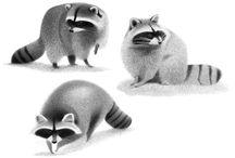raccoon ideas