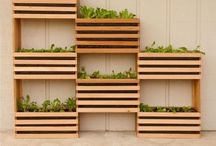 jardin vertical terrasse