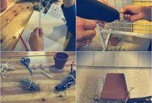DIY ✿ Nos petites expériences / Ici on partage avec vous nos petites expériences diverses et variées. Do It Yourself ;) #DIY #Propolia #Bricolage