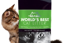 Cat Litters - Plant Based / Plant Based cat litters are more environmentally friendly and safer for your cat than clay!