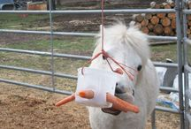 Ponies, horses, donkies a iné zvieratká a nápady pre ne / Ideas for ponies, horses, donkies, and other animals on M&M farm